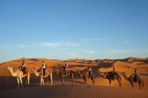 desert morocco travel